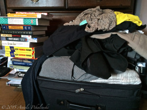 The current packing attempt (fail).